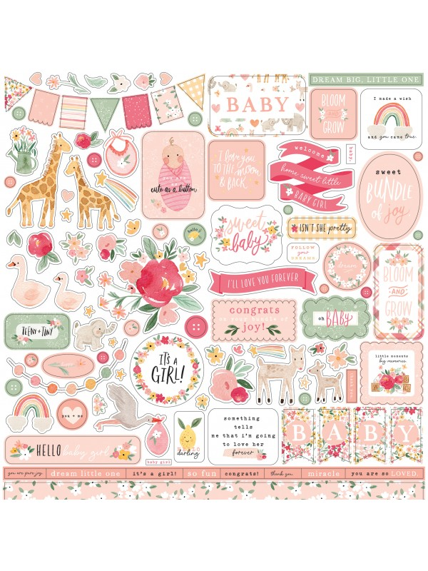 Mπλοκ χαρτιών Echo Park Welcome Baby Girl 12x12 Inch Collection Kit